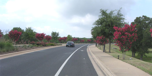 Our route to the Veloway takes us along Escarpment Blvd. The crepe myrtles that line the street are in full bloom now.