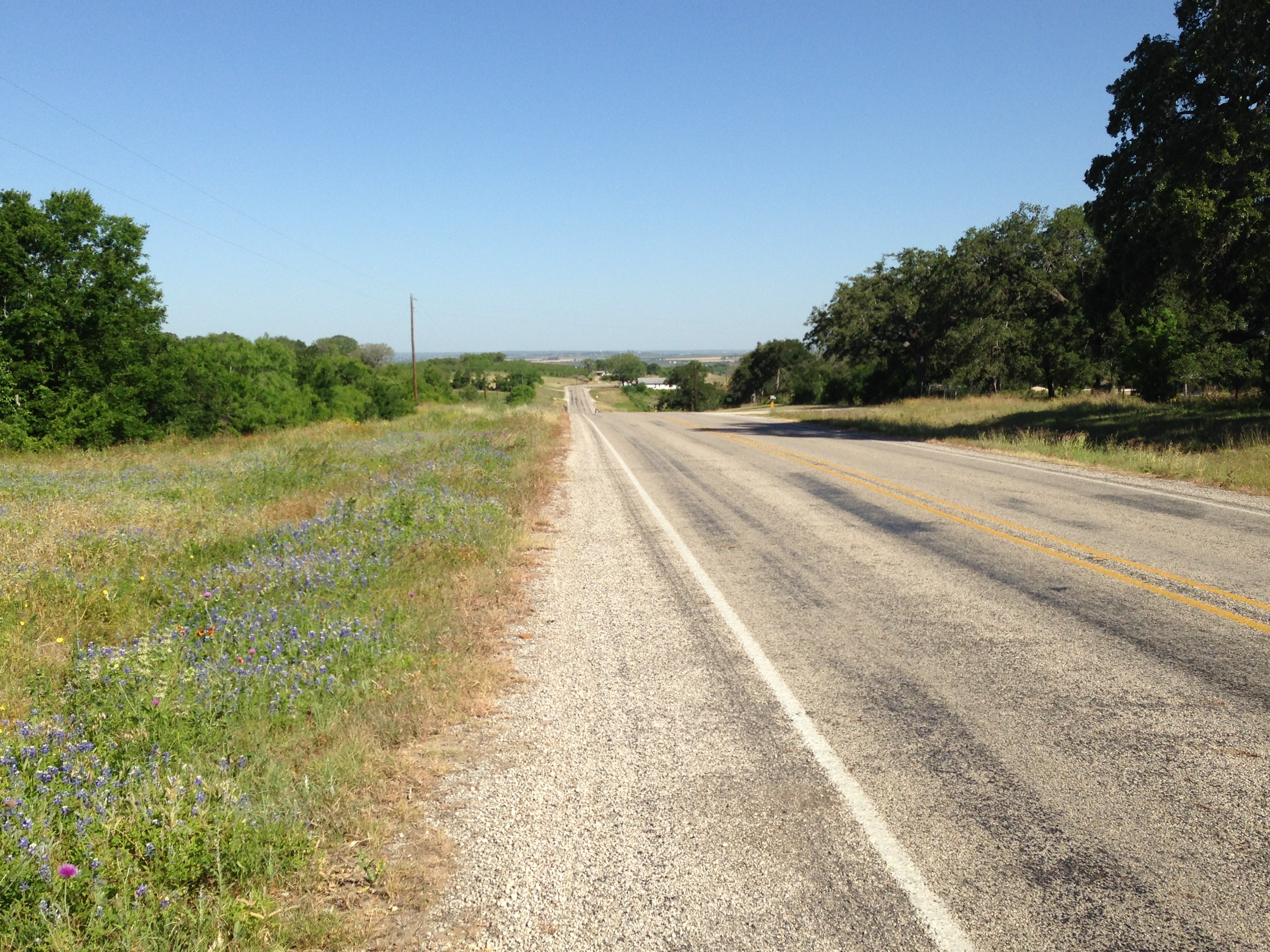 The road to Kingsbury, looking north. Some bluebonnets are still hanging on in roadside ditches. (Click all pix to embiggen.)